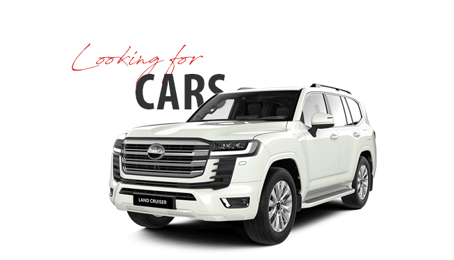 Stock 4x4, Pick-up, pick-up, cars and ambulance export Africa best prices